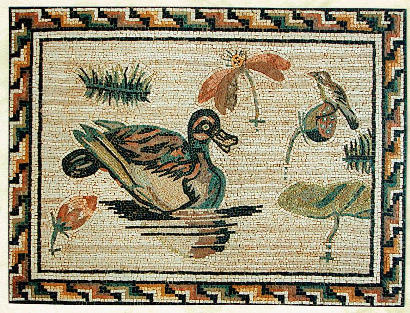 8-Mosaico-Pato
